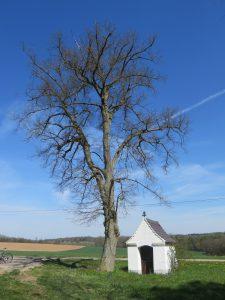 Ramhof - Kapelle - 2016-04-30 1